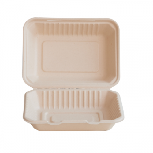 Eco-Fibre Large Takeaway Food Box 22.5 x 16.5 x 4cm